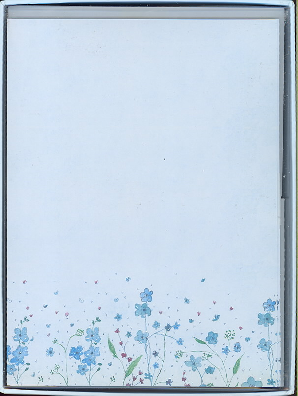 Blue Flowers Letter-Perfect Stationary By Wan, Lauren (ILT)